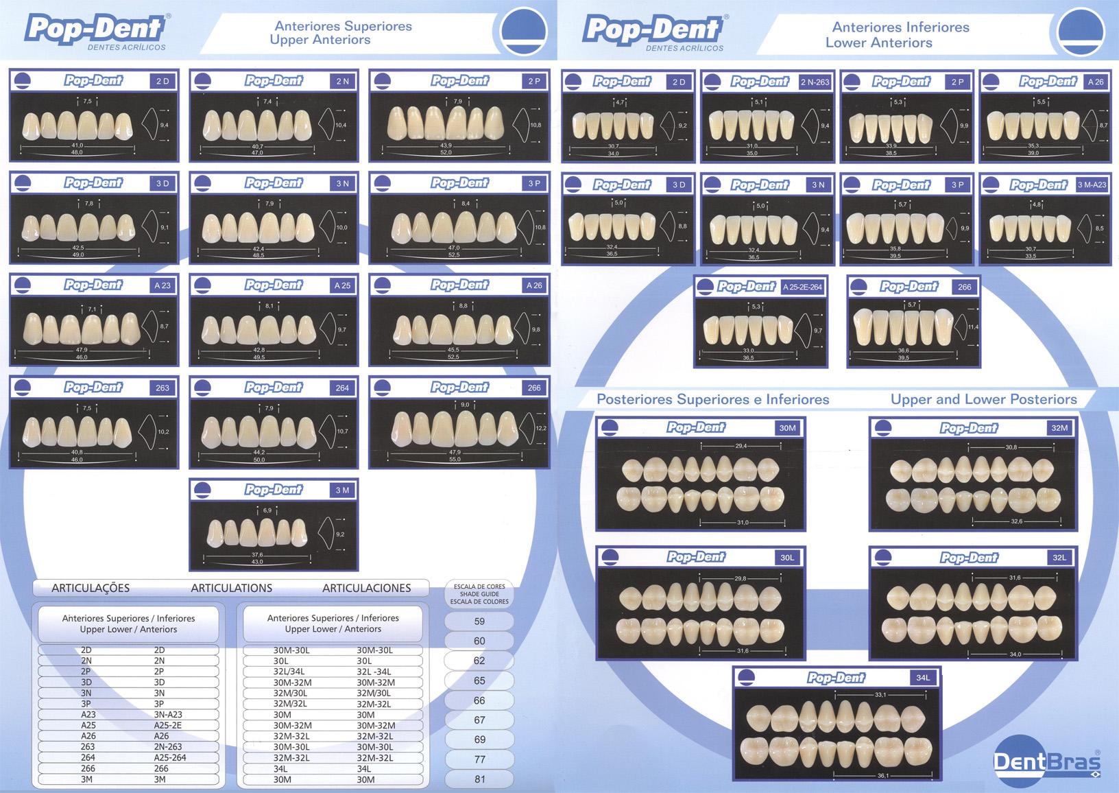 Carta Molde do produto Dente Pop-Dent 3M Anterior/Inferior 60