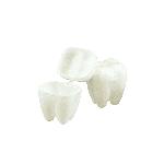 Baús do Dente