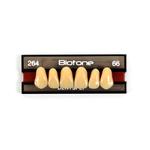 Dente Biotone Anterior/Superior