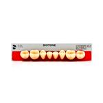 Dente Biotone Posterior/Inferior