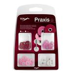 Disco de Lixa Praxis