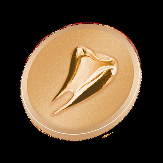 Pin Dente Gold
