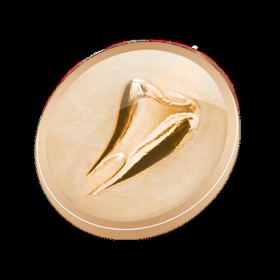 Pin Dente Perolado