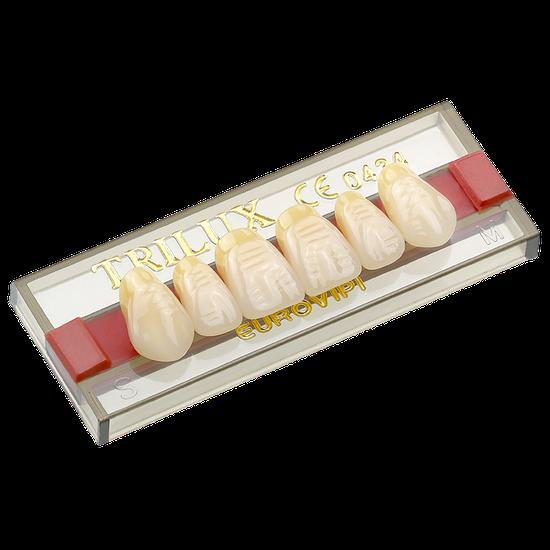 Dente Trilux Anterior/Inferior K6I Cor 1C