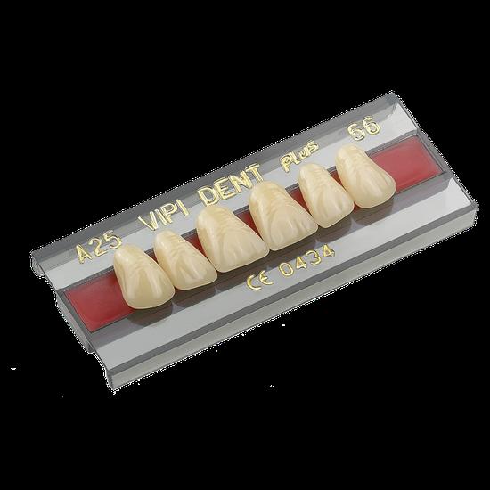 Dente Vipi Dent Anterior/Superior