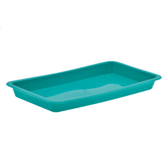 Bandeja p/ Esterilização 20 X 10 X 02cm - Verde