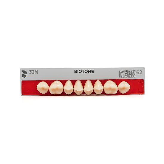 Dente Biotone Posterior/Superior